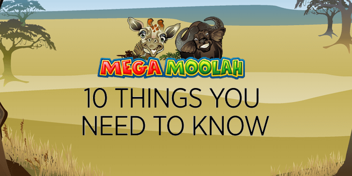 A look at all the things you need to know about the Mega Moolah jackpot slot from Microgaming