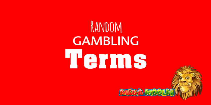 Gambling terms for new players