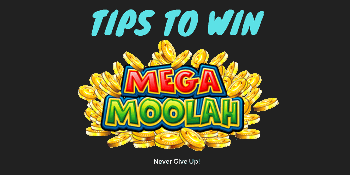 Tips on how you can win Mega Moolah jackpot