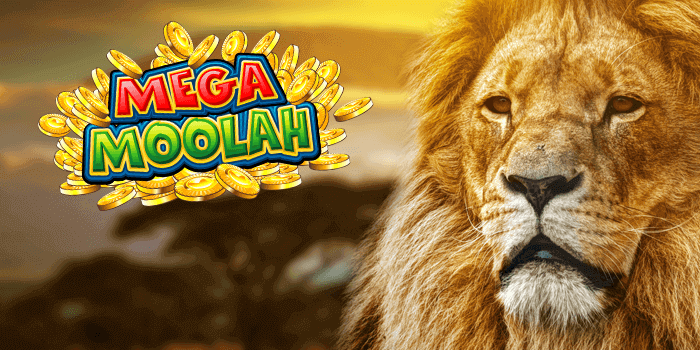 Mega Moolah Jackpot won on 24th of June 2018